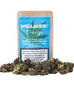 Wellauer CBD Therapy 3g